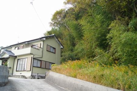 家に被さった樹木の伐採撤去
