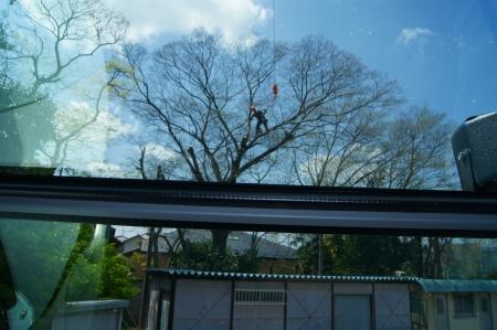しばし、クレーンはキープで、車窓から
