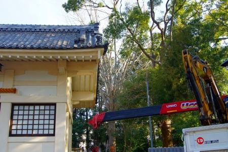 豊川市 特殊伐採作業 車両はココまでよっ