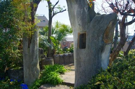 桂化木 木の化石ね!