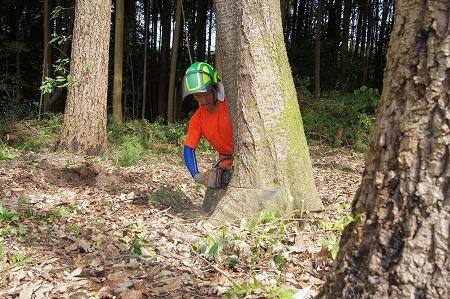 テル 伐りますっ~木こりに成りたいんです