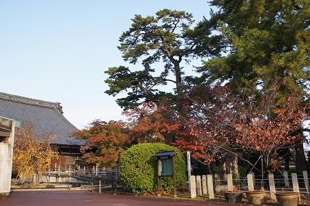 紅葉も見頃ですかね、照源寺 三重県桑名市