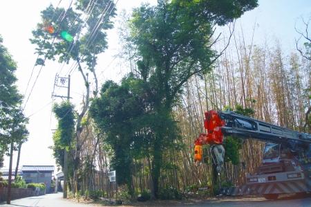 ラフタークレーン 伐採 25トン 岩本 東海市