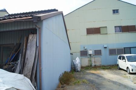 名古屋市南区 伐採1