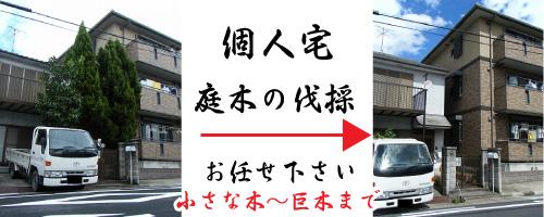 愛知県 名古屋市 個人宅の庭木の伐採もお任せ下さい。